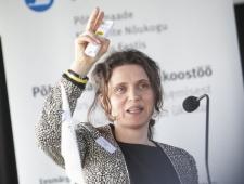 Anna Ekstedt, Läänemeremaade Nõukogu vanemnõunik ja inimkaubanduse vastase töörühma juht