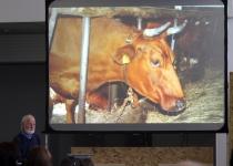 Niels Stokholm, biodünaamilise põllumajadusliku farmi Thorshøjgård omanik, Taani