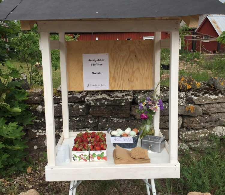 Street-side stand for eggs and strawberries with no vendor, operating on a system of trust